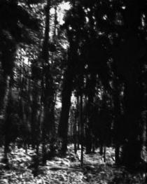 04_der-ewig-stille-freund-xxiii_50x40_heike